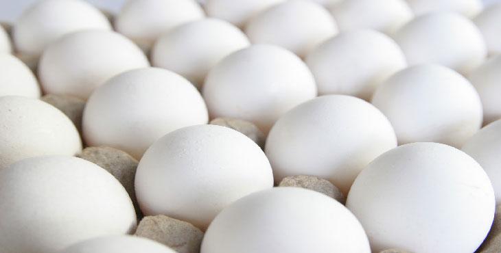 عرضه تخممرغ تنظیم بازاری