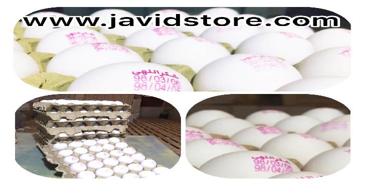 فروش تخم مرغ 12 کیلویی