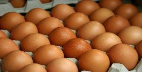 تخم مرغ رسمی کلهر