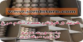 خرید تخم مرغ شکراللهی 11.900 الی 12