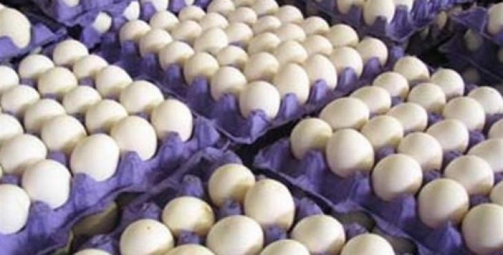 تخم مرغ از کشور صادر شد
