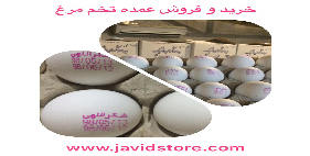 تخم مرغ شکراللهی 12/100 الی12/200