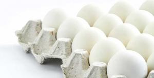 فروش عمده تخم مرغ اوزان مختلف