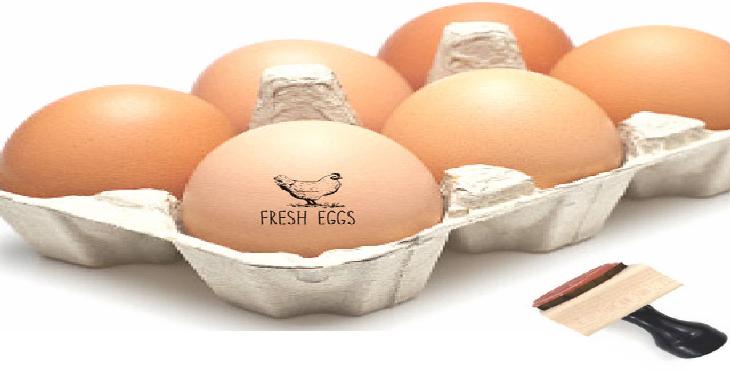 جولان تخم مرغ های بی هویت