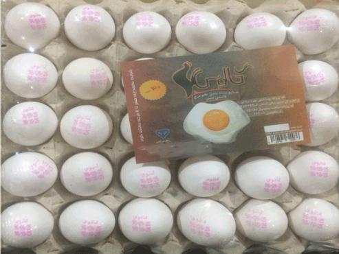 تخم مرغ بسته بندي کالوس