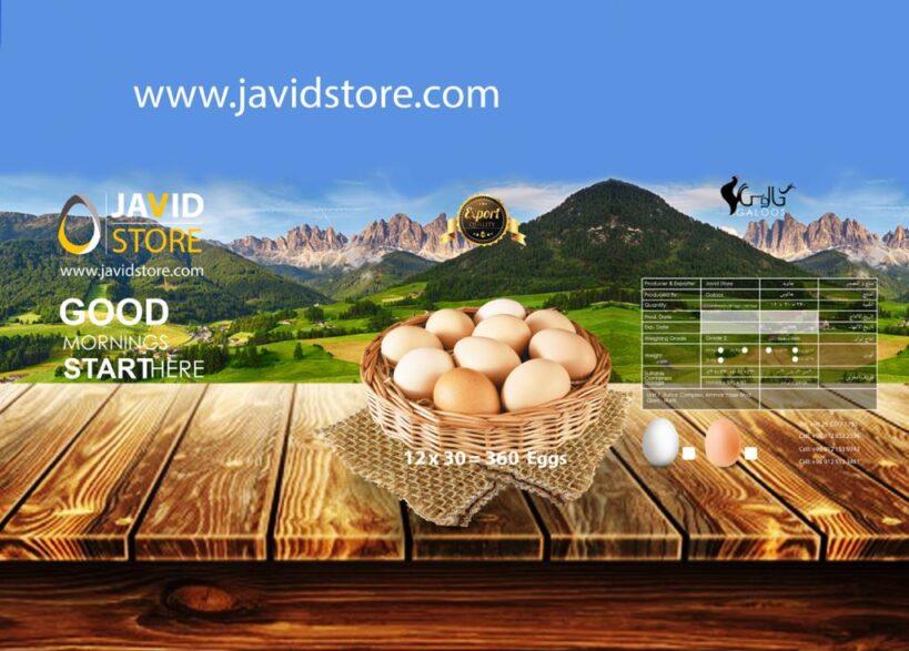 تخم مرغ پوست سفید صادراتی