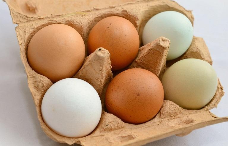نرخ یک شانه تخم مرغ ۱۶ هزار تومان است