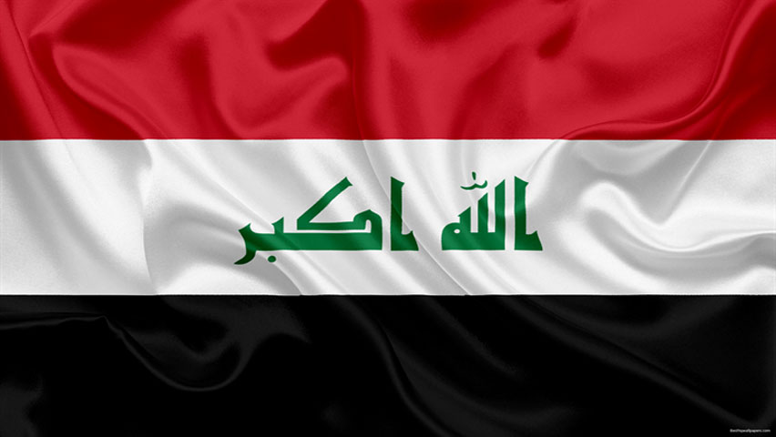 صادرات تخم مرغ به عراق