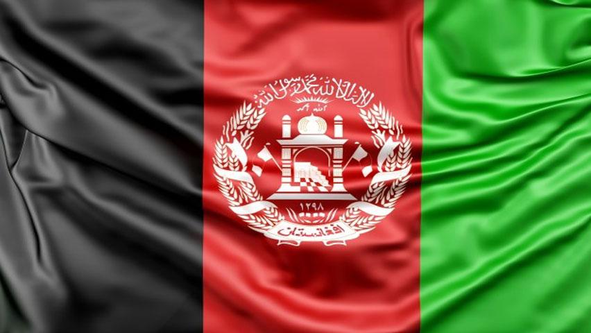 صادرات تخم مرغ به افغانستان