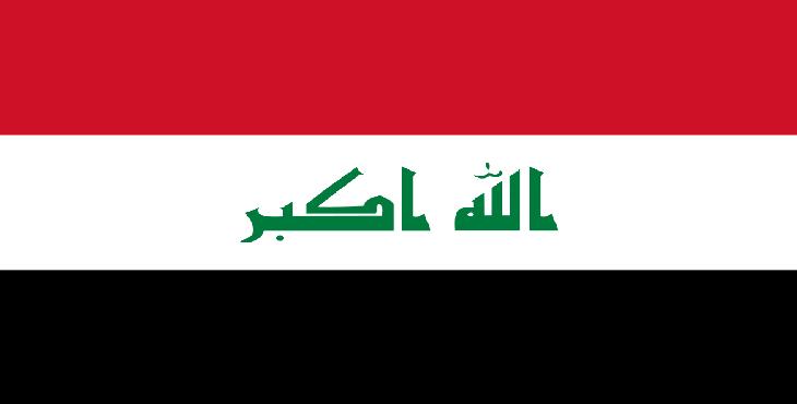 تخم مرغ صادراتی ویژه کشور عراق
