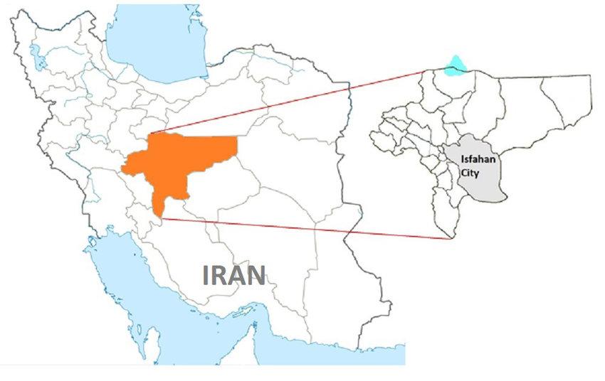 اصفهان رتبه دوم تولید تخم مرغ را در کشور دارد