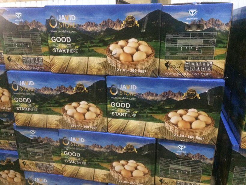تخم مرغ صادراتی ویژه کشور امارت متحد عربی