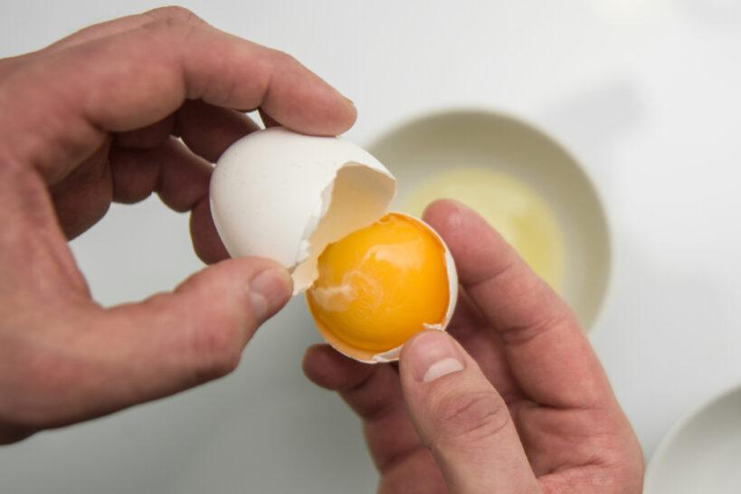 فروش تخم مرغ عمده آغازی