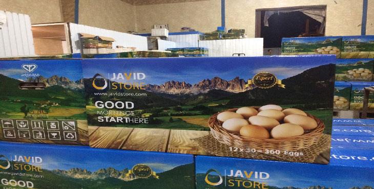 عوارض صادراتی تخم مرغ تا پایان شهریور صفر شد