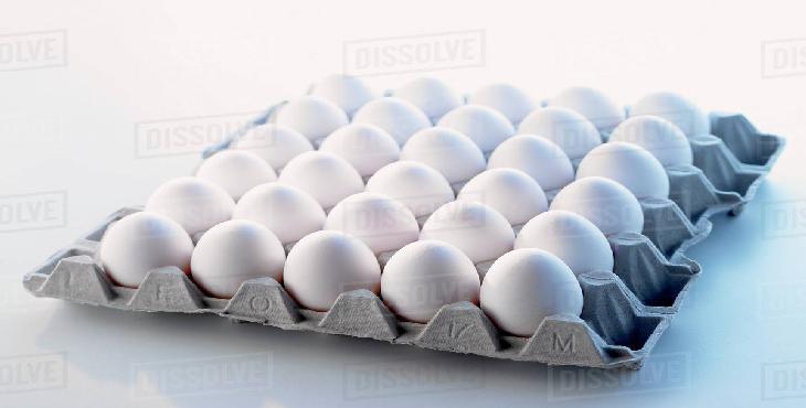 مجبور به تبعیت از قیمت مصوب تخم مرغ هستیم اما الزامی برای تولید نداریم