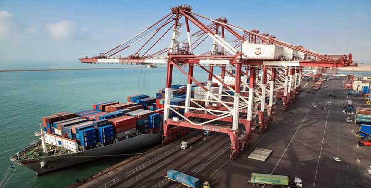 کاهش 70 درصدی شرکتهای واردکننده نهاده های دامی