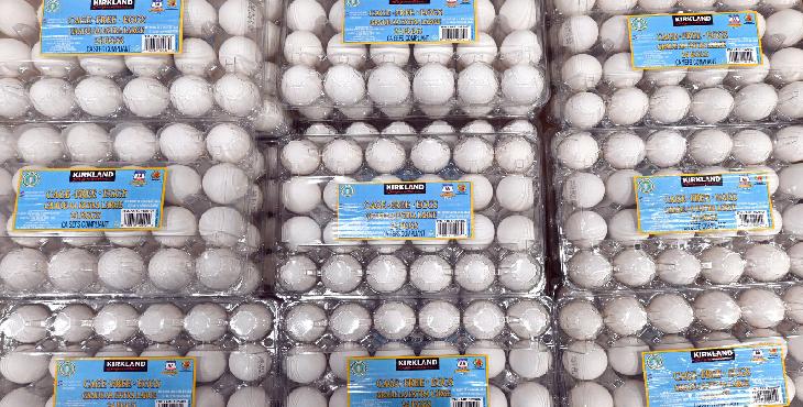 سرکوب قیمت تخممرغ به تولید ضرر میزند.