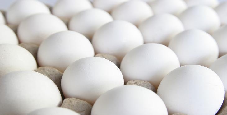 کاهش ۴۷ درصدی تولید تخم مرغ در مازندران