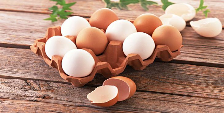 کیفیت پوسته تخم مرغ