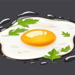 کاهش ۲۰ تا ۲۵ درصدی تولید تخممرغ