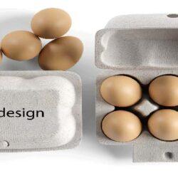 معاون بهداشتی و پیشگیری سازمان دامپزشکی گفت: با توجه به مشخص بودن قیمت، طی ماههای آتی عرضه تخم مرغ به صورت بسته بندی اجباری میشود