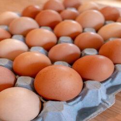 روند نزولی قیمت تخم مرغ ادامه دارد.
