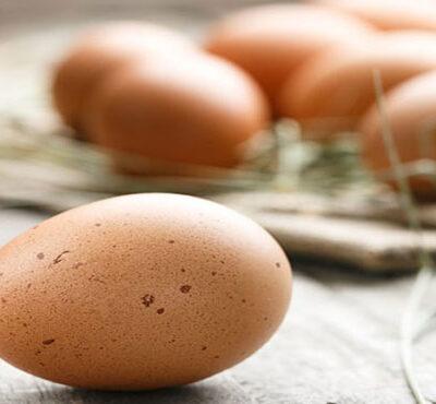 کشتار مرغ ها و کاهش جوجه ریزی؛ عوامل افزایش قیمت تخم مرغ