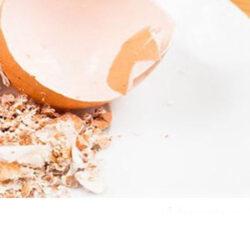 بازیافت پوسته تخم مرغ