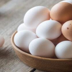 رئیس هیئت مدیره اتحادیه مرغ تخم گذار استان تهران بیان کرد: قیمت هر کیلو تخم مرغ درب مرغداری ۱۶ هزار تومان معادل شانهای ۳۲ هزار تومان است.