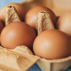 فعالیت سالنهای مرغ تخمگذار یزد با ۴۰ درصد ظرفیت/ تولید تخممرغ با نرخ مصوب ممکن نیست