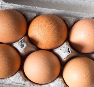 کاهش جوجهریزی علت نابهسامانی بازار تخممرغ