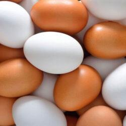 کاهش تولید و عرضه و رشد نسبی تقاضای خرید تخممرغ در فصول سرد سال، موجب عرضه چند نرخی و افزایش قیمت خردهفروشی هر شانه از این محصول درسطح شهر تهران به ۵۵ تا ۶۰ هزار تومان شده است.