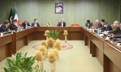 ستاد تنظیم بازار در حوزه نهادههای دامی در وزارت جهاد کشاورزی تشکیل میشود.