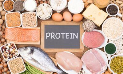 محصولات پروتئینی پس از ماه رمضان همچنان تامین است