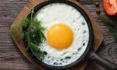 شاهد افزایش قیمت تخم مرغ در بازار خواهیم بود