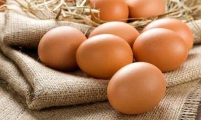 قیمت تخممرغ در قزوین از نرخ ستاد تنظیم بازار پایینتر است