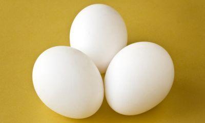 دست فروشان تخم مرغ در قزوین جمع آوری شدند