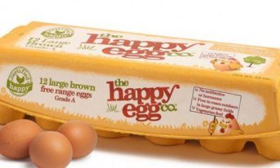 کمپین تبلیغاتی جدید  شرکت Happy Egg