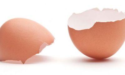 کاربردهای جالب پوست تخم مرغ