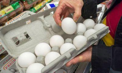تخممرغ کیلویی ۱۸۰۰ تومان ارزان شد