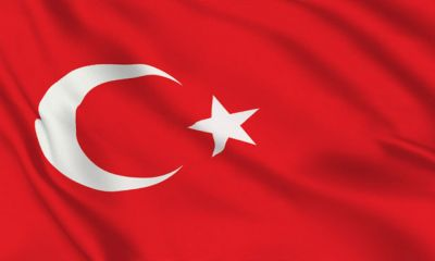 صادرات تخممرغ ترکیه به سوریه و کویت