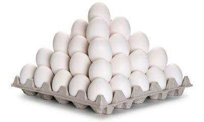 تخم مرغ در لانه گرانی
