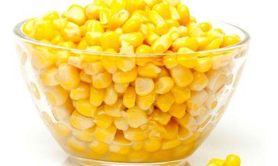مدیر نظارت بر توزیع کالاهای اساسی کشاورزی پشت پرده افزایش قیمت ذرت را افشا کرد